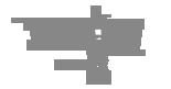 img_program_zwalczania_szkodnikow_m02