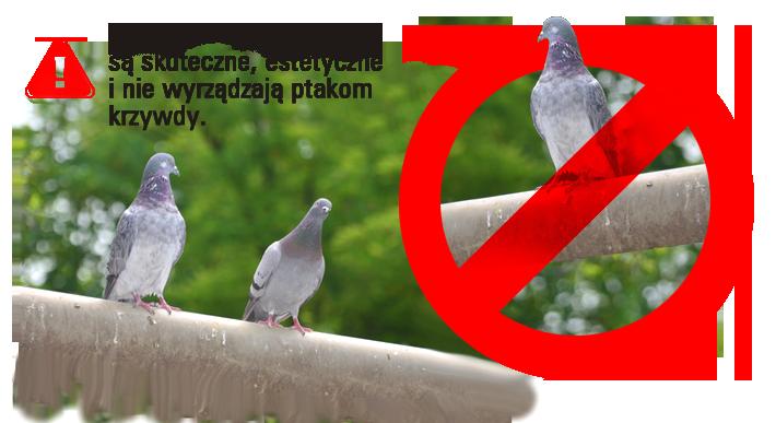img_zabezpieczenia_przed_ptakami